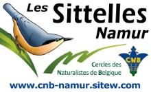 logo Sitelle Namur